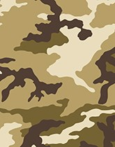 Camouflage party supplies & decorations.
