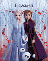 Disney Frozen themed party supplies and decorations
