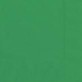 Emerald Green Luncheon Napkins - 20pk