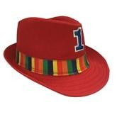 Rainbow Red 1st Birthday Fedoras Hat