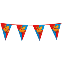 Knights & Dragons Flag Banner Bunting 6M
