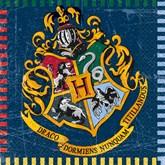 Harry Potter Luncheon Napkins 16pk