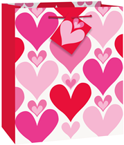 Valentine's Red & Pink Hearts Medium Gift Bag