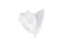 White Tissue Paper Sheets 10pk
