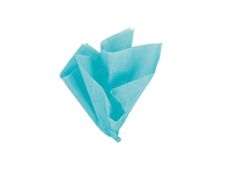 Teal Tissue Paper Sheets 10pk