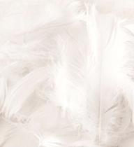 Eleganza White Mixed Feathers 50g