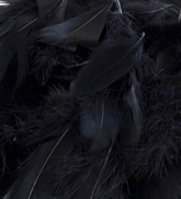 Eleganza Black Mixed Feathers 50g