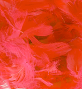 Eleganza Red Mixed Feathers 50g
