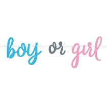 Boy or Girl Gender Reveal Banner 7ft
