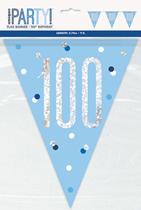 Blue Glitz 100th Birthday Foil Flag Banner 9ft