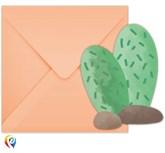 Llama Party Catus Invitations and Envelopes 6pk