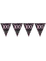Pink Celebration Happy 100th Birthday Flag Banner