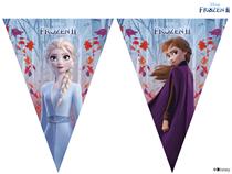 Disney Frozen 2 Birthday Flag Banner
