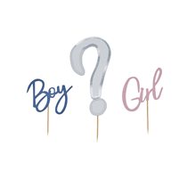 Gender Reveal Boy Or Girl Cake Topper Set
