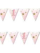 Twinkle LIttle Star Pink 1st Birthday Flag Banner