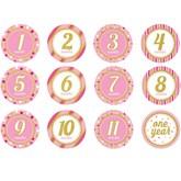 Glitter Baby Girl Monthly Milestone Stickers 12pk