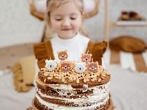 Teddy Bear Birthday Candles 6pk