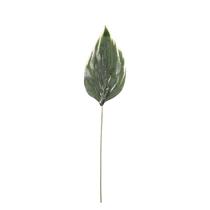 """Green Hosta 26"""" Single Leaf"""