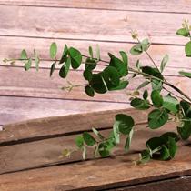 Eucalyptus Green Leaf Spray
