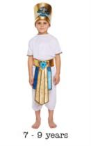 Children's Egyptian Boy Fancy Dress Costume 7 - 9 yrs